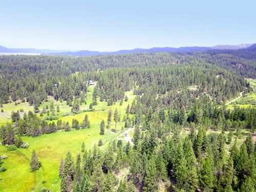 Wooded Recreational Land Wooded : Cascade : Valley County : Idaho