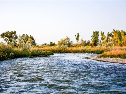 Montrose Riverbend Farm : Montrose : Colorado