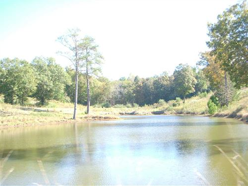 110 Acres With Pasture & Woodlands : Banks : Pike County : Alabama