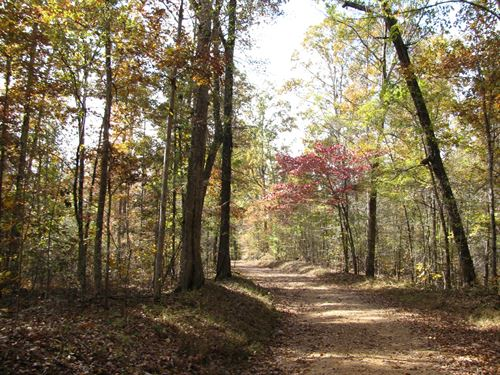 Land Tennessee, Build Recreational : Enville : Chester County : Tennessee