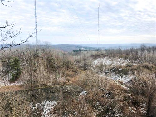 Steeply Sloped With Woods Near PA : Binghamton : Broome County : New York
