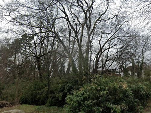 Greenwood Ave, Hot Springs, AR : Hot Springs : Garland County : Arkansas