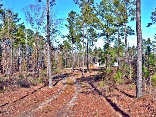 12 Acres Chesterfield County SC : Chesterfield : South Carolina