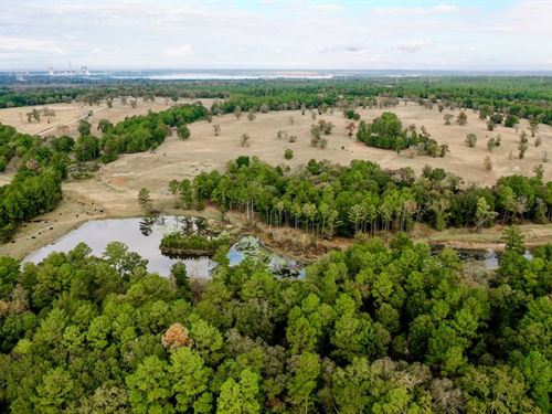 265 Acres Perfect For Ranchers : Anderson : Grimes County : Texas