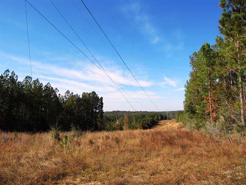 Whitehouse Creek Tract : Spanish Fort : Baldwin County : Alabama
