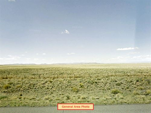 Large Secluded Lot : Blanca : Costilla County : Colorado