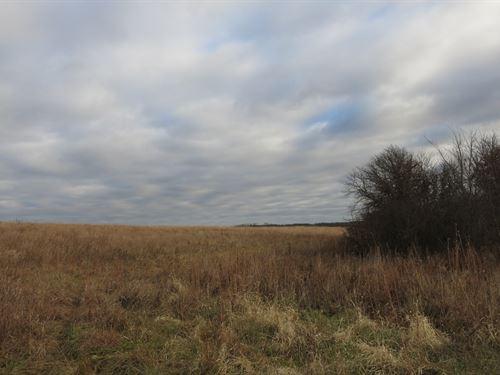 Crp Farm With Hunting in NW MO : Ridgeway : Harrison County : Missouri