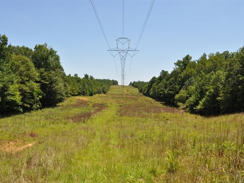 Hunting & Timber Investment Tract : Kingville : Lamar County : Alabama