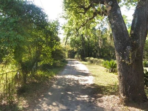 Raw Land to Build Your Home in FL : Jacksonville : Duval County : Florida