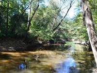 Lynches River Tract : Bethune : Chesterfield County : South Carolina