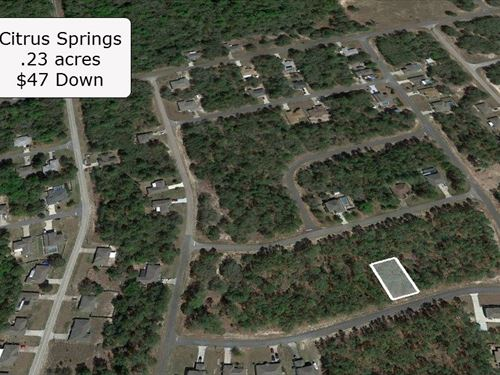 .23 Acre Lot on Paved Road : Citrus Springs : Citrus County : Florida