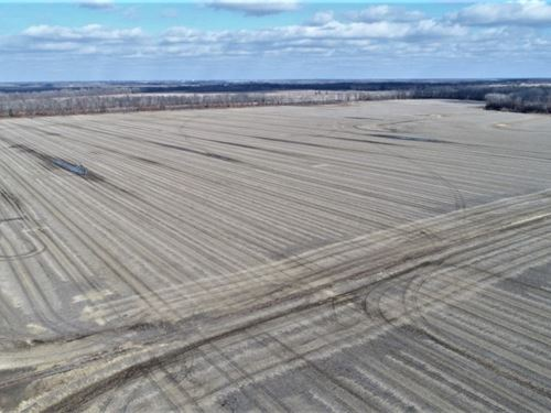 696 Ac Row Crop Bottom, Super-Nice : Chillicothe : Livingston County : Missouri