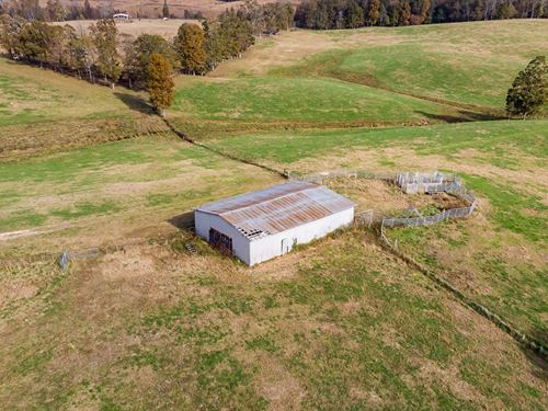 160 Acres Beautiful Hunting Tract : Iron City : Wayne County : Tennessee