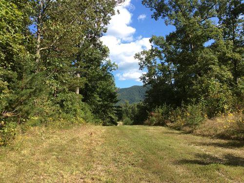 Secluded Acreage in Elliston, VA : Elliston : Montgomery County : Virginia