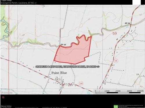 Crawfish & Rice Tract, Evangeline : Ville Platte : Evangeline Parish : Louisiana