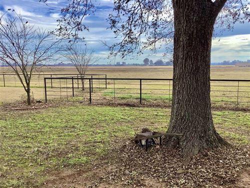 Country Estate of Plain Dealing : Plains : Bossier Parish : Louisiana