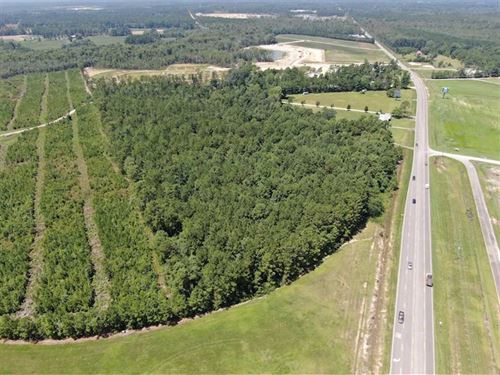 12.5 Acres of Development Land : Longs : Horry County : South Carolina