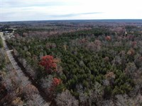 31 Acres of Hunting And Timber Lan : Ridgeway : Fairfield County : South Carolina
