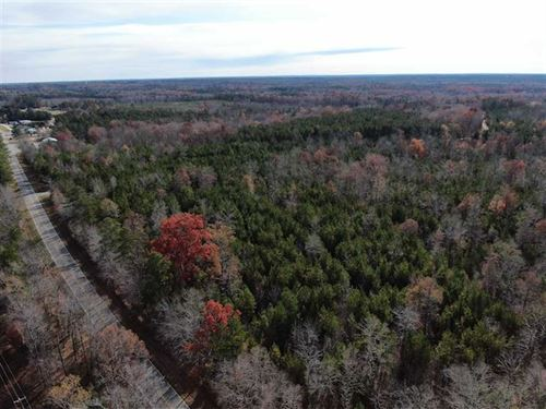 31 Acres of Hunting And Timber Lan : Ridgeway : Fairfield County : South Carolina
