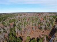 42 Acres of Hunting And Timber Lan : Ridgeway : Fairfield County : South Carolina