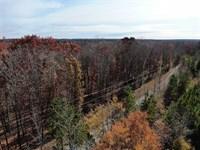 94 Acres of Hunting And Timber Lan : Ridgeway : Fairfield County : South Carolina