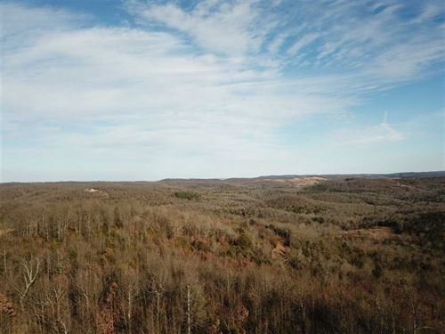 95 Acres With Electric & Beaut : Yellville : Marion County : Arkansas