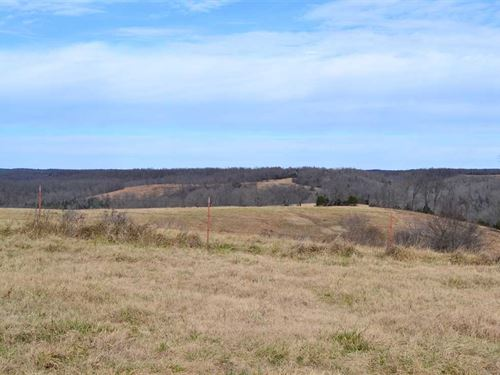 335.5 Acres Cattle Farm & Recr : Yellville : Marion County : Arkansas