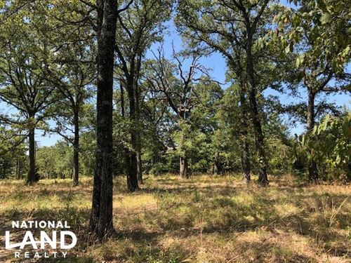 33 Acres, Open Areas, Wooded : Malakoff : Henderson County : Texas