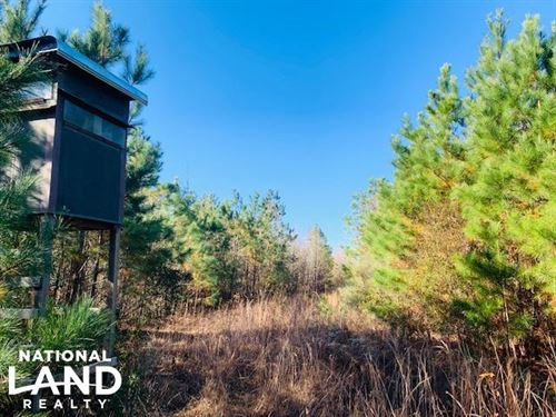 Water Tower Tract : Kinston : Lenoir County : North Carolina