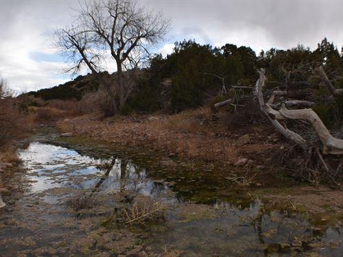 Senior Water Rights Land Penrose : Penrose : Fremont County : Colorado