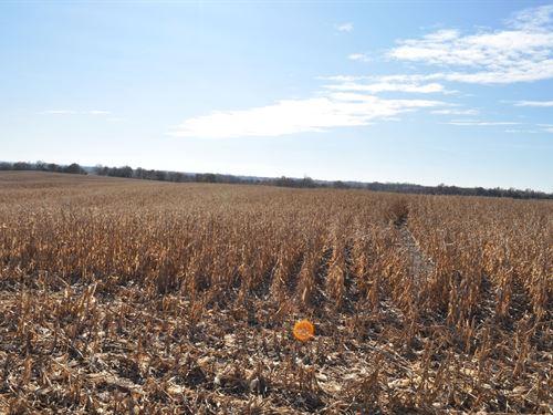 High Tillable 40 Acre Row Crop Farm : King City : Dekalb County : Missouri