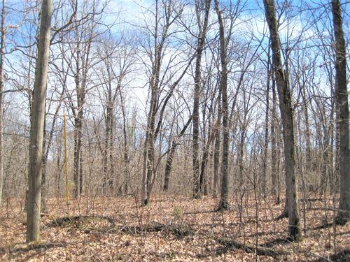 Property Missouri, 5 Acres : Versailles : Morgan County : Missouri