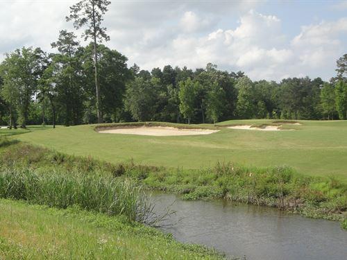 Carter Plantation Waterfront Lot : Springfield : Livingston Parish : Louisiana