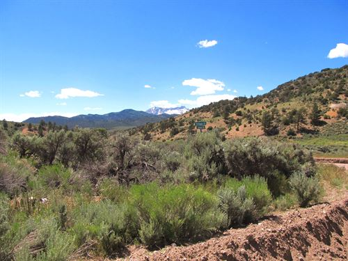 Trees, Mountains, Privacy, $199/Mo : Fort Garland : Costilla County : Colorado