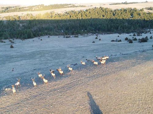 Lower Wild Horse Canyon Road : Drummond : Granite County : Montana