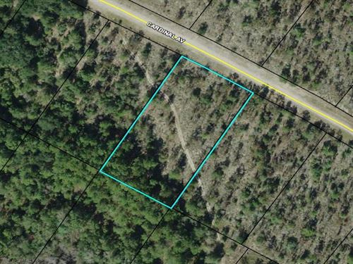 Compass Lake 1.17 Acres : Marianna : Jackson County : Florida