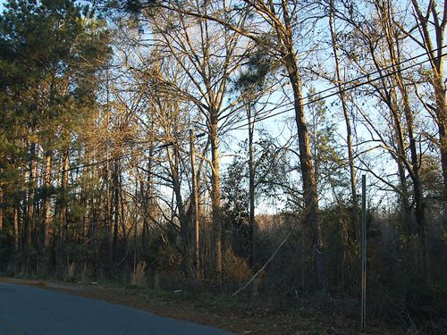 Large Residential Lot With Creek : Gordon : Wilkinson County : Georgia