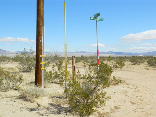 Premium Lot, Power, Water, $318/Mo : Landers : San Bernardino County : California