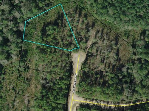 Compass Lake Hills, Culdesac Lot : Alford : Jackson County : Florida