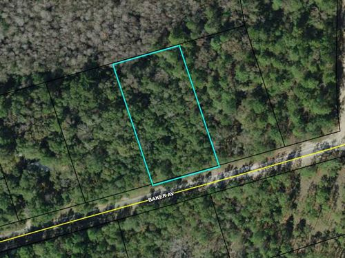 Beautiful Lot in Compass Lakes : Alford : Jackson County : Florida