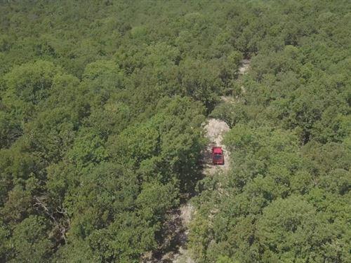 14 Acres Near National Forest : Ava : Douglas County : Missouri