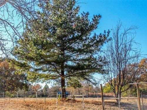 17 Acres Near Atoka : Atoka : Oklahoma