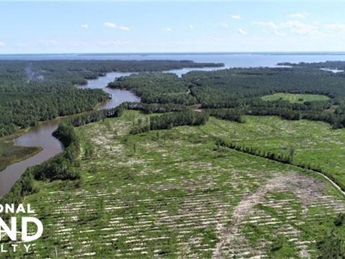 Beaufort North Creek : Belhaven : Beaufort County : North Carolina