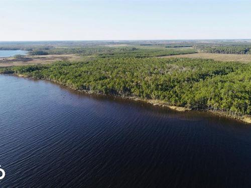 330 Acres in Belhaven, NC : Belhaven : Beaufort County : North Carolina