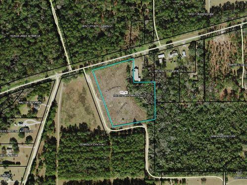 5+ Acres Attractive Waukeenah : Monticello : Jefferson County : Florida
