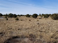 Manufactured Home Site 2.5 Acres : Edgewood : Santa Fe County : New Mexico