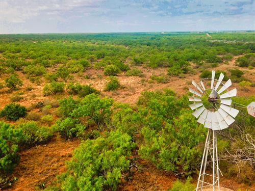 Carrizo Verde Ranch : Carrizo Springs : Dimmit County : Texas