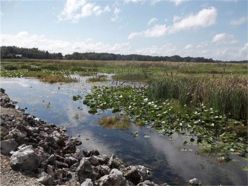48.26+- Acre Waterfront Home Site : Winter Haven : Polk County : Florida