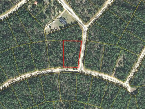 Beautiful Corner Lot McCormick Lake : Alford : Jackson County : Florida