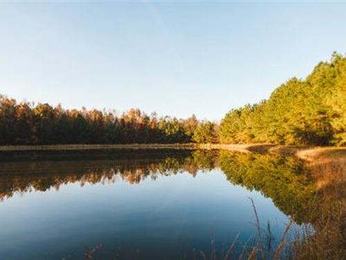 Thompson Pond : Statesboro : Bulloch County : Georgia
